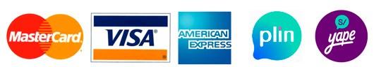 visa mastercard yape plin